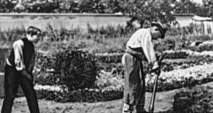 «Политый поливальщик» братьев Люмьер