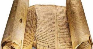 папирус что это